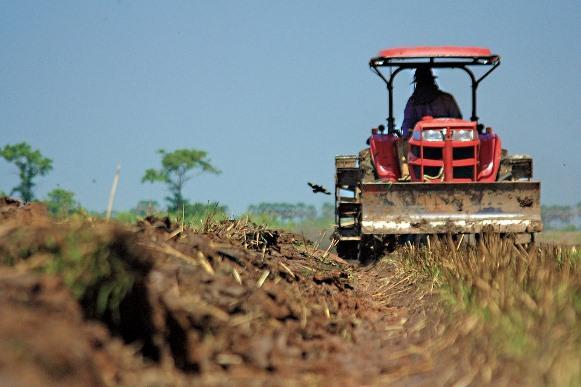 O setor de agronegócio vai gerar empregos em 2016. (Foto Ilustrativa)