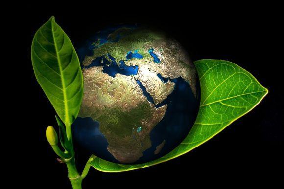Curso Técnico em Meio Ambiente (Foto Ilustrativa)