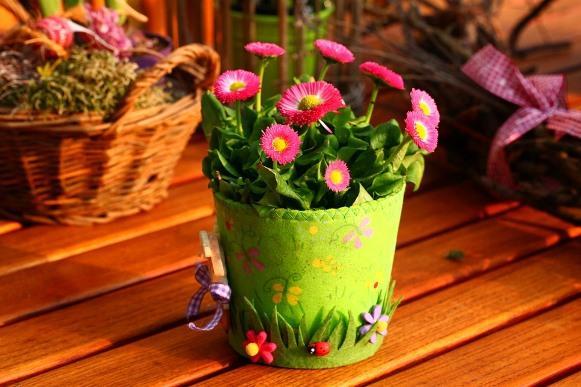 Cada jardim pede um tipo de planta. (Foto Ilustrativa)
