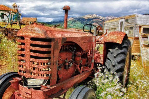 O programa de bolsas do governo neozelandês também aborda pós-graduação na área de Agricultura (Foto Ilustrativa)