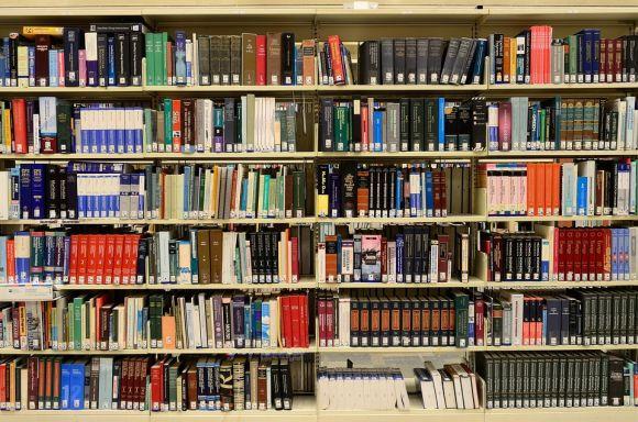Um bom lugar para doar livros é a biblioteca (Foto Ilustrativa)