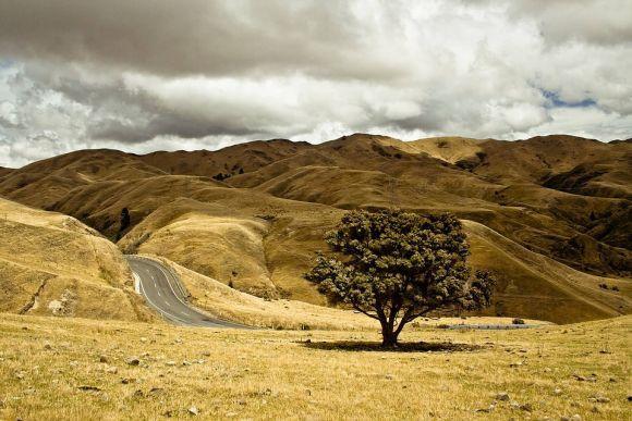 Programa Turismo Rural 2016: Inscrições