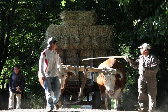 O programa beneficia os trabalhadores rurais de baixa renda (Foto Ilustrativa)