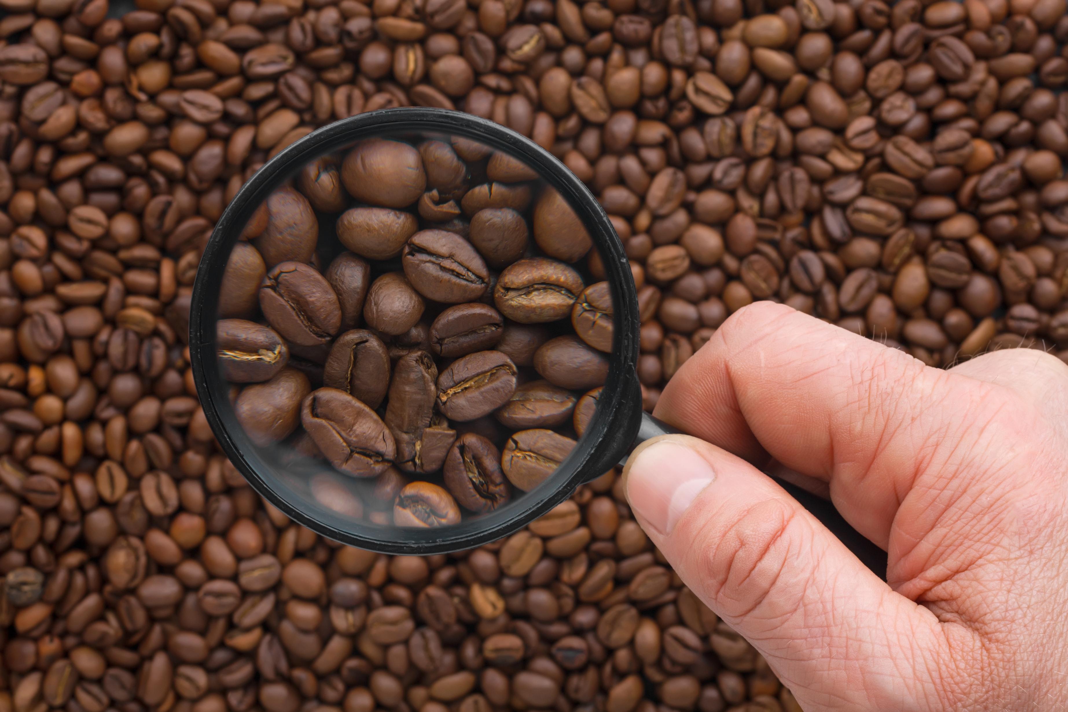 Cafeína ajuda emagrecer (Foto: Reprodução/Tem Natural Aqui)
