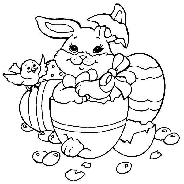 Coelho dentro do ovo (Foto: Reprodução/Portal Escolar)