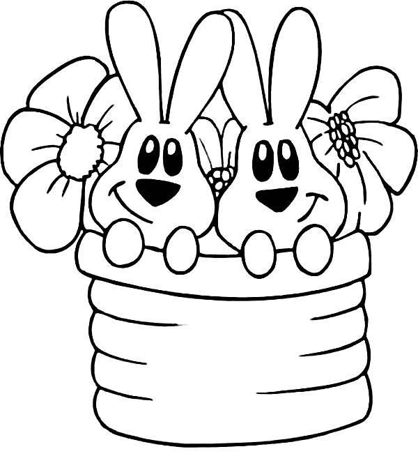 Cesta com coelho (Foto: Reprodução/Portal Escolar)