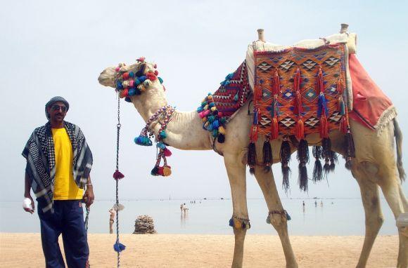 O curso de guia turístico é uma ótima opção para quem adora viajar (Foto Ilustrativa)