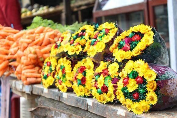 Também há vários cursos na área de Floricultura (Foto Ilustrativa)