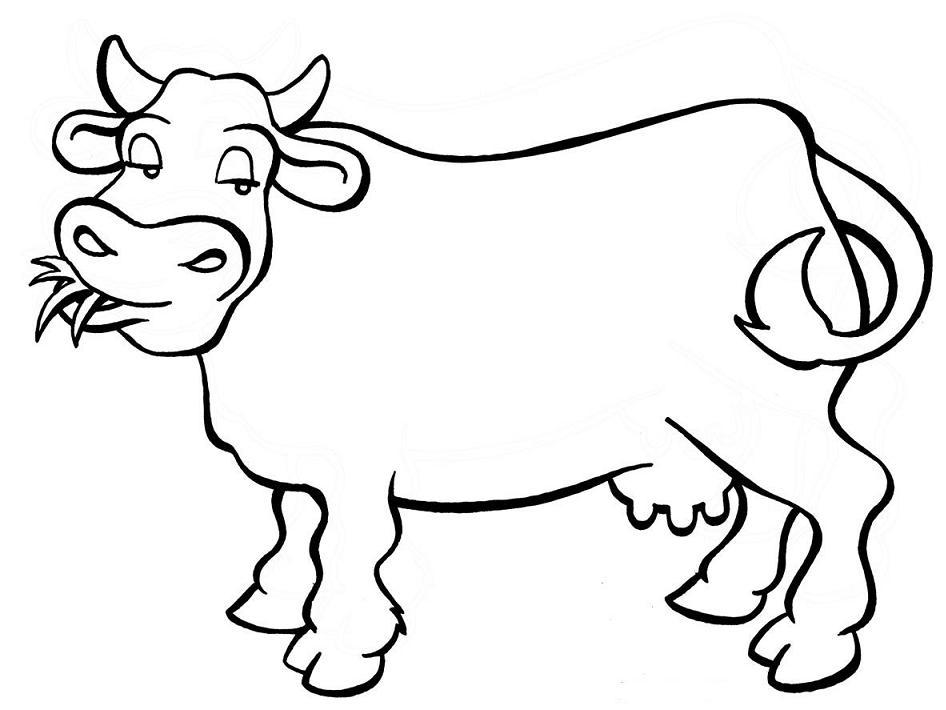 Desenho de vaca para colorir (Foto: Divulgação)
