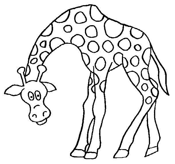 Desenho de girafa para colorir (Foto: Divulgação)