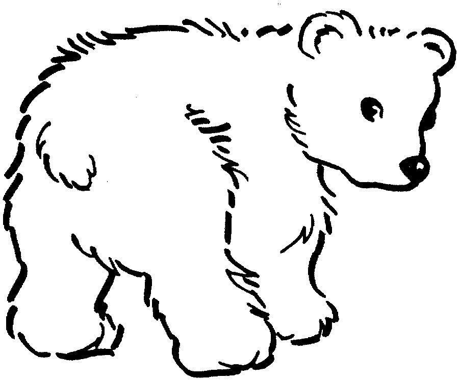 Mais um exemplo de animal para colorir (Foto: Divulgação)