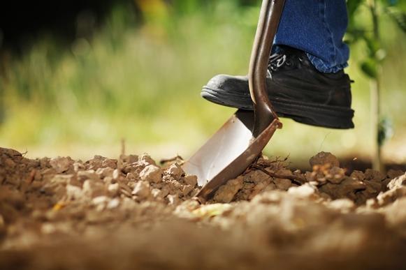 A Monsanto está contratando estagiários. (Foto Ilustrativa)