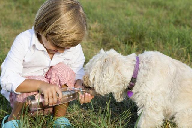 Levar o cachorro para passear faz parte das suas obrigações (Foto: Divulgação)