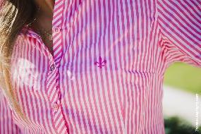 Camisas femininas Dudalina: Modelos