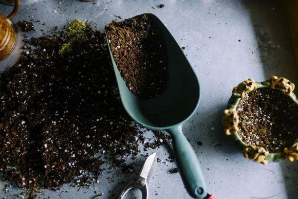 A oferta Leroy Merlin cursos grátis tem várias opções, como o curso de jardinagem (Foto Ilustrativa)