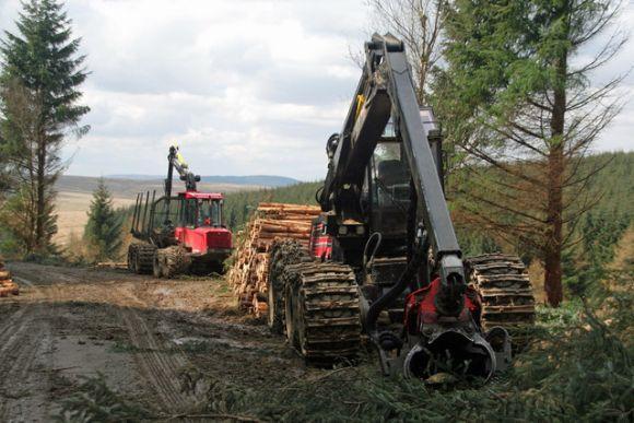 Para participar do curso de Operador de Máquinas Florestais, é preciso ter idade mínima de 18 anos (Foto Ilustrativa)