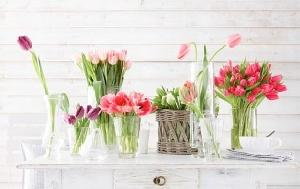 Decoração e as Flores de Cada Estação do ano