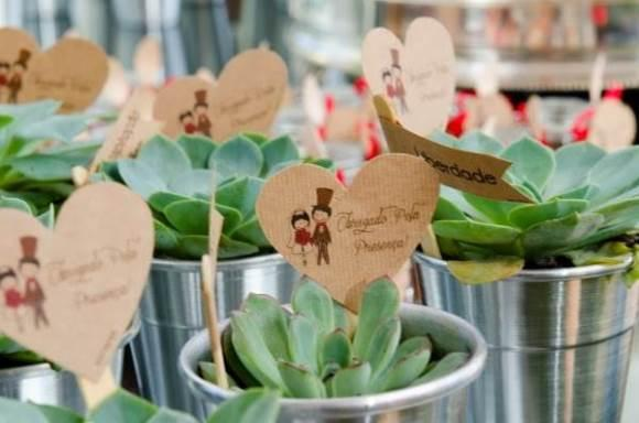 Plantas suculentas para dar de lembrancinha. (Foto: Reprodução/Amarelo Ouro)
