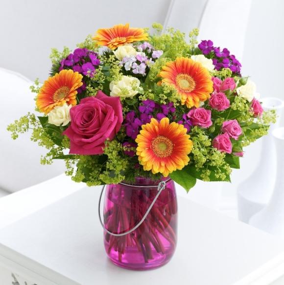 Vasos de plantas para decorar modelos e dicas 14 alphafreepress