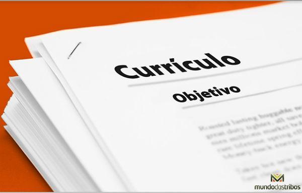 Modelos de Curriculum Prontos (Foto: sobrecursos)
