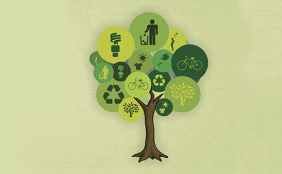 A sustentabilidade é o tema principal dos cursos (Foto: Divulgação Ministério do Meio Ambiente)