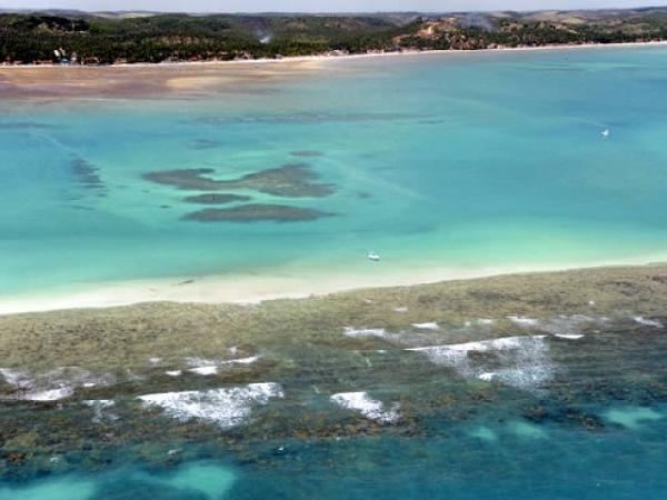 São várias as piscinas naturais da região (Foto: Prefeitura de Maragogi)