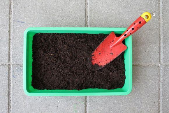 É possível criar uma horta caseira usando materiais simples (Foto Ilustrativa)