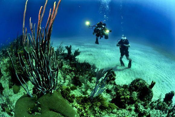 Aprenda mais sobre os oceanos no curso online da USP (Foto Ilustrativa)