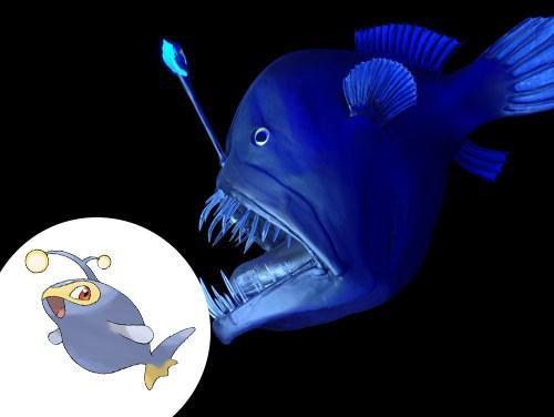 Lanturn (Peixes Lophiiformes) (Foto: Divulgação)