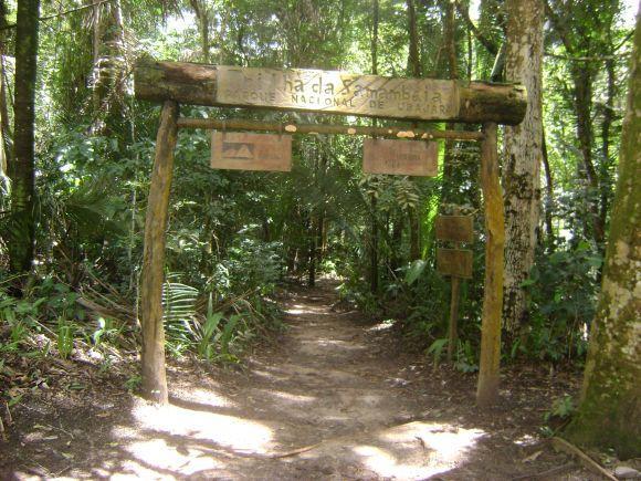 Parque Nacional Ubajara (Foto: Reprodução internet)