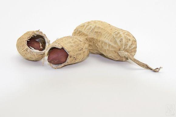 A casca do amendoim é uma grande fonte de antioxidantes (Foto Ilustrativa)