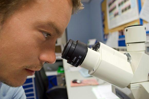 Muitos também querem ser cientistas (Foto Ilustrativa)