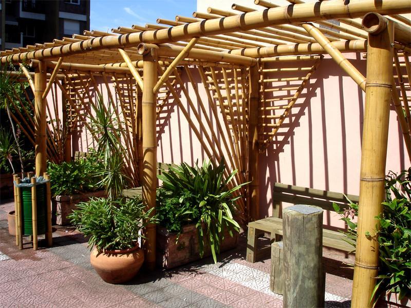 trelica bambu jardim : trelica bambu jardim:bambu pode dar uma nova cara ao seu pergolado (Foto: Divulgação)