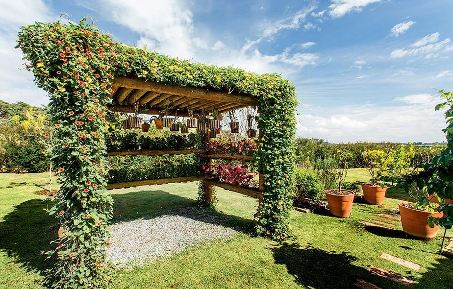 O pergolado com plantas fica muito bonito (Foto: Divulgação)