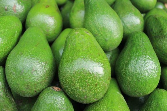 Os benefícios do abacate são muitos (Foto Ilustrativa)