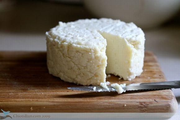 Receita de queijo caseiro (Foto Ilustrativa)