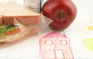 Dicas de lanches saudáveis para levar na escola