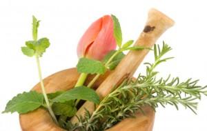 Cuidados com o consumo de plantas medicinais