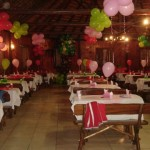 29251 decoração 8 150x150 Dicas para decoração de festas