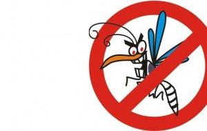 Dengue: o que é importante saber sobre a doença