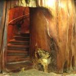 297579 a criatividade superou todas as expectativas 150x150 Descubra maneiras criativas de decorar as escadas