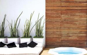 Saiba como usar as plantas para decorar a casa