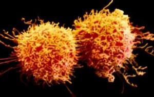Cientistas pesquisam vacina para vários tipos de tumores