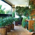 355134 Sacadas decoradas com plantas fotos 1 150x150 Sacadas decoradas com plantas: fotos