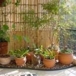 355134 Sacadas decoradas com plantas fotos 5 150x150 Sacadas decoradas com plantas: fotos