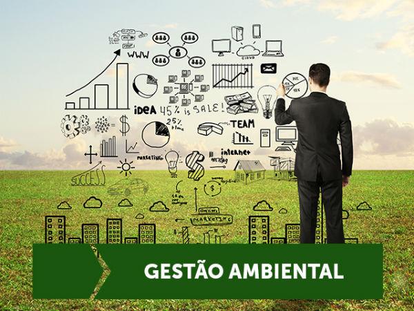 cursos ead a distancia gestao ambiental