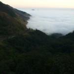 393720 P1040195 150x150 Florestas mais bonitas no mundo   fotos