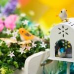 397690 Decoração de jardim para festas dicas fotos como fazer 2 150x150 Decoração de jardim para festas: dicas, fotos, como fazer