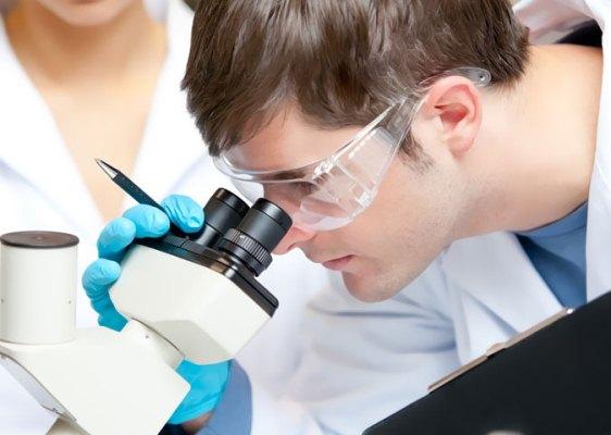 Olhando no microscópio