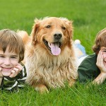 427493 crianças e animais fotos 4 150x150 Crianças e animais: fotos